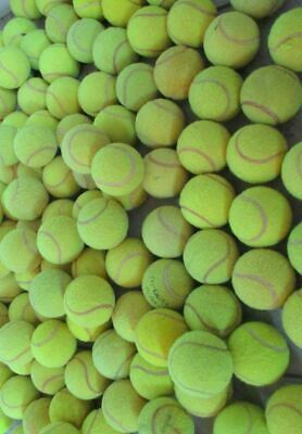 30 Used Tennis Balls For Dogs - All Balls Branded Balls From Major Manufacturers
