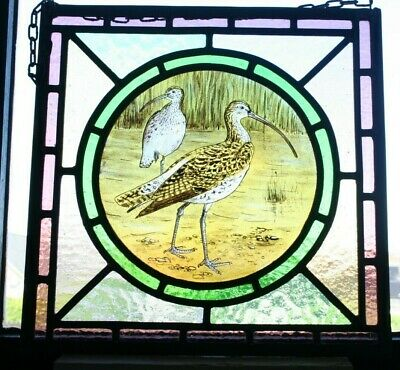 Beautiful stained glass panel of a curlew.