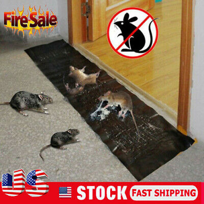2Pack 1.2M Big Size Mice Mouse Traps Board Super Sticky Rat Snake Bugs Safe UK