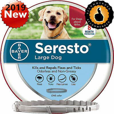 Bayer Seresto Kills and Repels Flea and Tick Collar for Large Dogs over 18 lbs