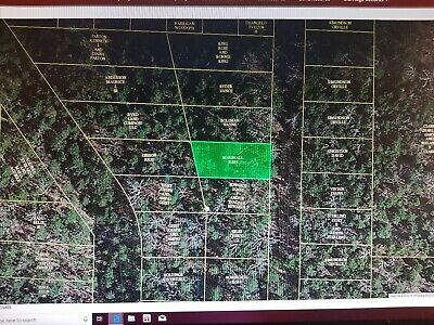 4454 sq feet (.10 acres) Henderson, AR- 1 mile to Norfork Lake - NO RESERVE