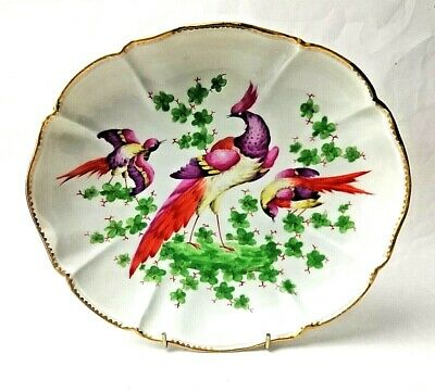 "Antique Hand painted Edme Samson Chelsea Bird Large Fluted Bowl 11""  Magnificent"