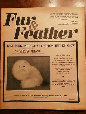 Fur & Feather Magazine 1970 April 16Th Long Hair Cat Jubilee Show Kittens Etc