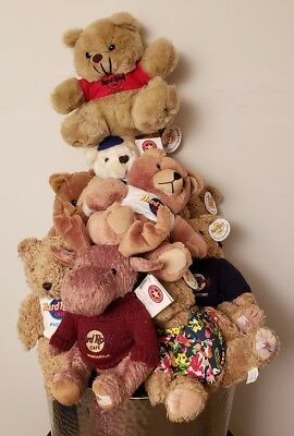 Lot of 11 Limited Edition Bears Hard Rock Cafe Collectable and Rare