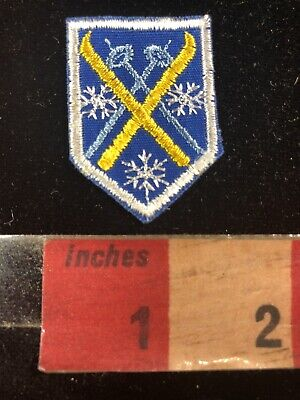 Rather Small Exquisite SNOW SKI Shield Patch 00RG