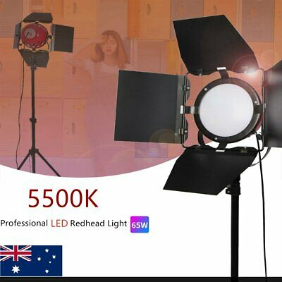 65W Led Redhead Dimmable Continuous Daylight Photo Studio Light Stand Kit