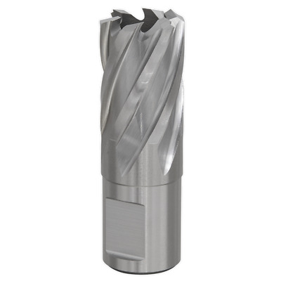 MAGC20 Sealey HSS Magnetic Drill Cutter 20mm [Drill Bits & Sets]