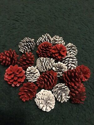 """Small Red And White Pine Cones 20) Count - 1""""-1""""1/2"""