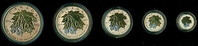 2014 'Fractional Set 5 Silver Maple Leaf' Coin Set .9999 Fine Silver Gold Plated