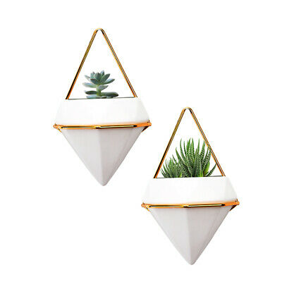 2x Wall Hanging Green Plant Wall Hanging Planter Box Pot Flower Holder Ornament