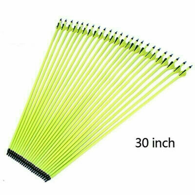 30 inches Archery Carbon Arrows Plastic Vanes SP500 ForCompound Bow Hunting