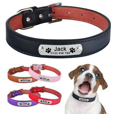 Personalised Dog Collar Leather Custom Engraved Name ID Collar Puppy Cat XS S M