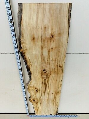 Timber Waney Character Spalted Sycamore Art Craft Wood Turning Coffee Table