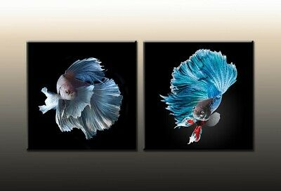 Fun Gifts Home Art Wall Decor Feng Shui Fish Goldfish painting Printed on canvas
