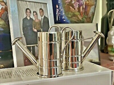 Novelty Watering Cans Cruet Set in Stainless Steel.