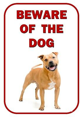 Beware Of The Dog - Staffordshire Bull Terrier Warning *New Laminated Dog Sign*