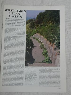 Living Countryside #103 – What makes a plant a weed?  – (vol 8 P2041 to 2060)