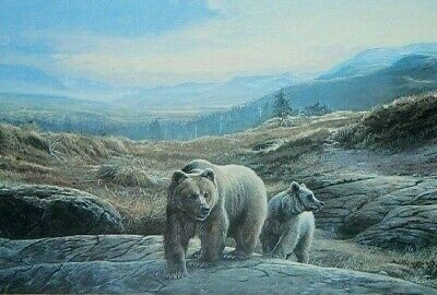 Lissa Calvert Wildlife Artist Framed Bear Print of Original Oil Painting