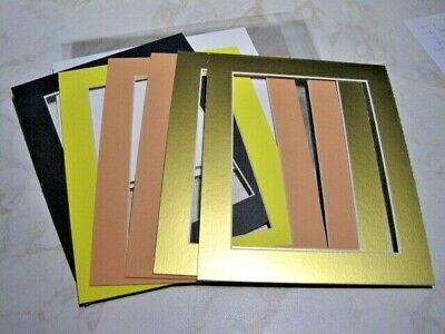 6 Mounts 8 x 10, Plus Backs & Clear Bags  Navy, Yellow, 2 Peach & 2 Gold – Lot 3