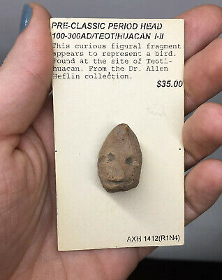 Pre-Columbian Teotihuacan Terracotta Pottery Head Avian Artifact Ancient Human