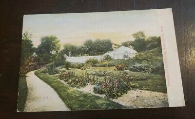 Early Collectable  Mass. Postcard