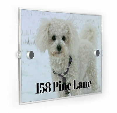 Bichon Frise Dog Modern Style Personalised House Number Plaque