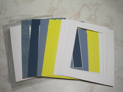 8 Mounts 9 x 7, Plus Backs & Clear Bags  3 Blues 2 Yellow 3 White – Lot 10