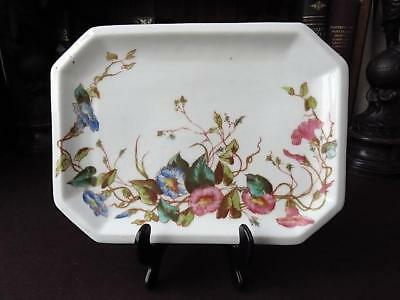Antique Continental (German) Porcelain Tray With Botanical Decoration