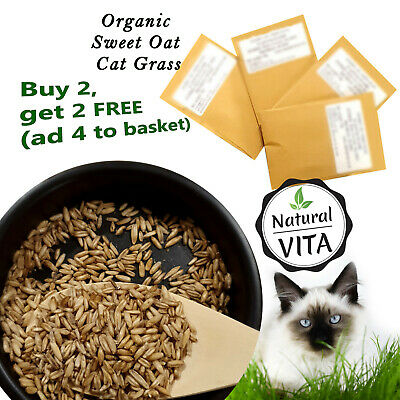 ORGANIC SWEET OAT CAT PETS GRASS SEEDS in Biodegradable Paper Pack GET 2 FREE