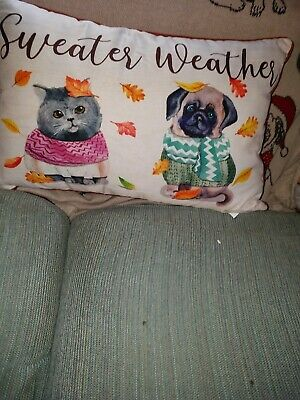 Sweater Weather Pug And Cat Pillow