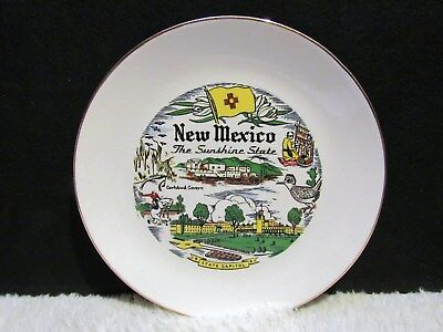 """9.25"""" New Mexico: The Sunshine State Decorative Plate, Collectible"""