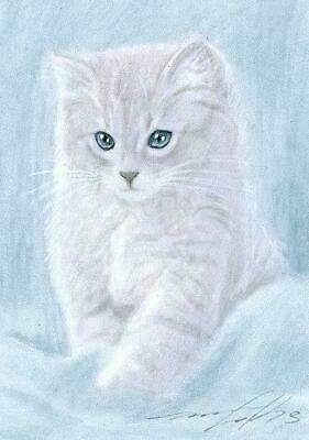 ACEO print limited edition siam cat ragdoll cat by Anna Hoff