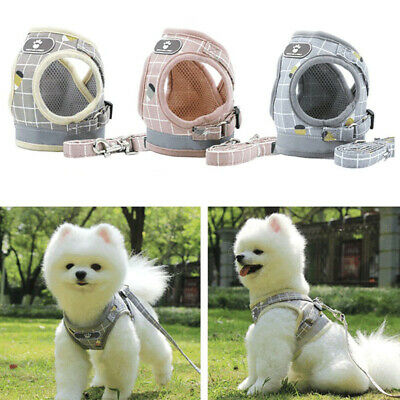Puppy Small Dog Cat Harness and Walking Leads Set Pet Breathable Mesh Vest