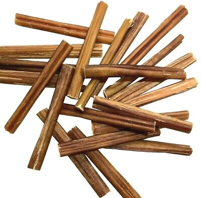 6 inch PREMIUM BULLY STICK Dog Chew - Excellent Dog Treat - VALUE PACKS!!