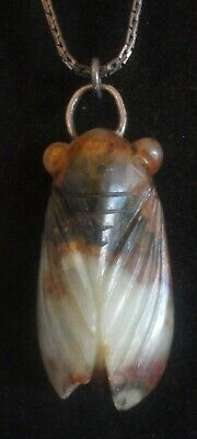 An Alluring Archaic Chinese Brown And White Jade Cicada Pendant