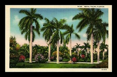 Us Linen Postcard Royal Palms Lining Path In Tropical Florida