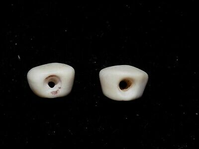 Pre-Columbian Corn Kernel Shell Beads, Pair
