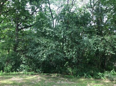 NO RESERVE! High Value Area Illinois- IL Land for Sale 1.11 Acres- Assessed $45K