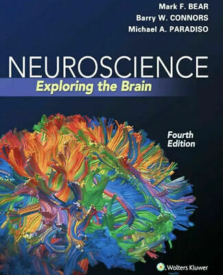 ✅ Neuroscience Exploring the Brain 4th Edition by Mark P.D.F EßOOK 15s Delivery✅