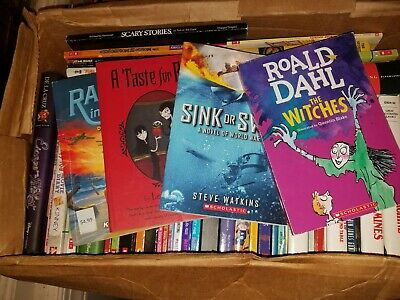 Lot of 25 Chapter Books BOYS GIRLS Youth Early Reader Children RANDOM Selection