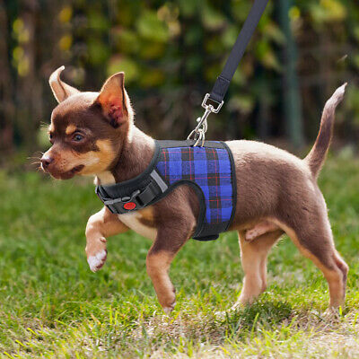 Chihuahua Small Pet Dog Vest Harness and Leash Set Reflective Mesh Padded Yorkie