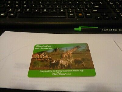 Walt Disney World parks 10 day NEVER EXPIRE park hopper water park fun & more