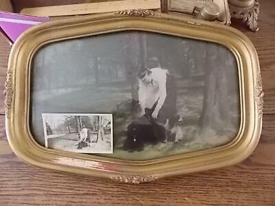Antique Curved Glass Frame Lady Spaniel Dogs Pic+Orig. Photo Meyer Gilbertsville