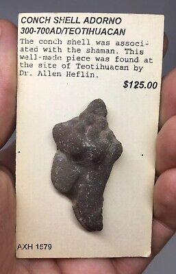 Pre-Columbian Conch Shell Adorno TEOTIHUACAN Ancient Artifact Terracotta Pottery