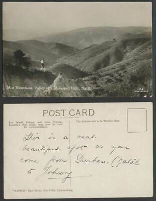 South Africa Mist Mountains Valley of 1000 Thousand Hills NATAL Dog Old Postcard