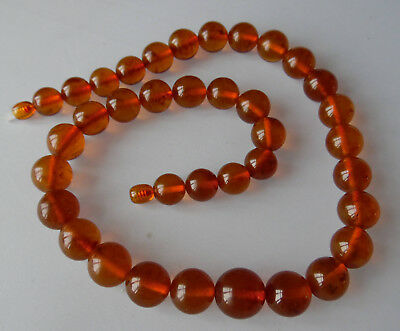 Beautiful Old Baltic Amber Pressed Necklace