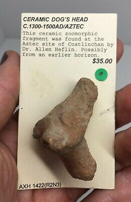 Pre- Columbian Terracotta Pottery ZOOMORPHIC Dog Head Ancient Artifact AZTEC