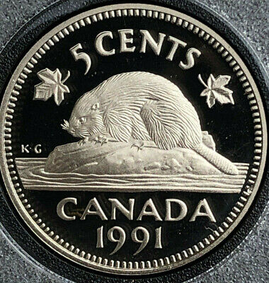 1991 BU Frosted Proof Canada Nickel from mint set 5 Cent 5c Canadian UNC