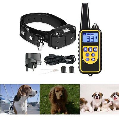 Rechargeable Electric Shock Dog Training Collar LCD Display 800m Waterproof Pet