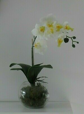 Artificial White Orchid Flower Arrangement Plant Glass Bowl Vase Centrepiece